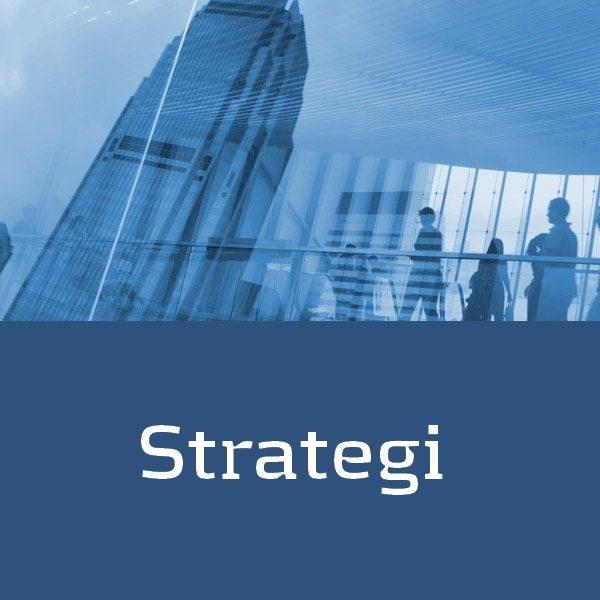 Få hjælp til at lave en strategi for SEO, Sociale medier m.m.