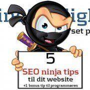 OnlineSynlighed.dk giver dig her 5 SEO Ninja tips til dit website (og én bonus til din programmør)