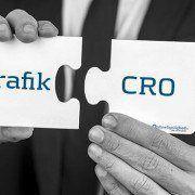 Synlighed og besøgende er ikke lig bundlinje – ikke uden CRO