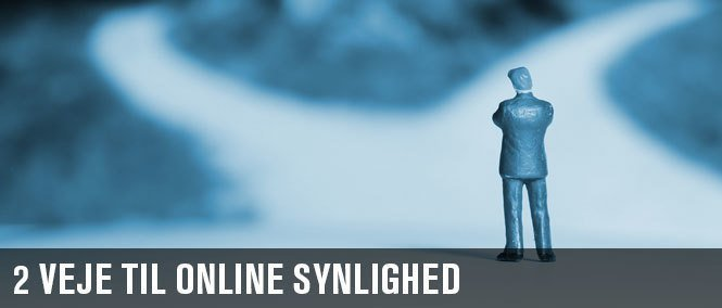 2 veje til online synlighed med din nye hjemmeside